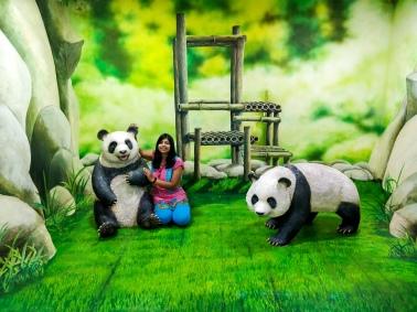 I love Panda's :)
