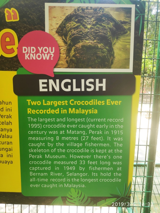 Facts on crocs