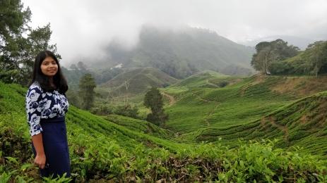 budget backpacking malaysia and cameron highlands