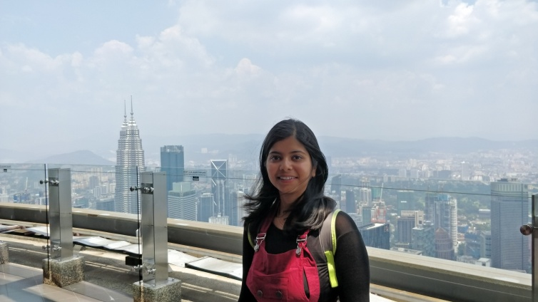 View of Twin tower from KL tower